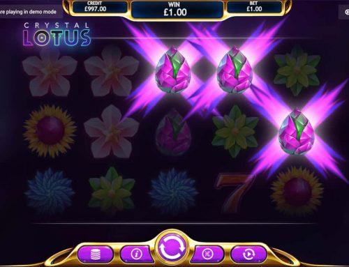 EyeCon's Crystal Lotus Is In Full Bloom