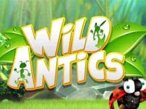 Wild antics slot up to 200 welcome match bonus mobile pc play blueprint gaming transports us into a cartoon world among the grass with wild antics in this five reel 20 pay line wild antics slot we see our winning malvernweather Choice Image